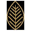 ecofriendly-feature-icon